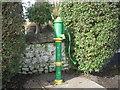 O0646 : Water pump, Kilbride, Co Meath by C O'Flanagan