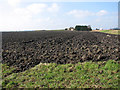 TF5803 : Tile Farm by Evelyn Simak