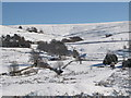 NY8448 : Snowy East Allen Dale at Ellershope near Spartylea by Mike Quinn
