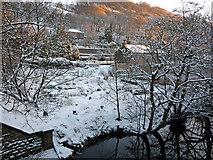 SD9926 : Allotments between River Calder and the Rochdale Canal, Mayroyd by Phil Champion