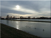 TL4279 : Shimmering sun - The Ouse Washes at Sutton Gault by Richard Humphrey
