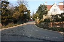 TQ5365 : Sparepenny Lane by N Chadwick