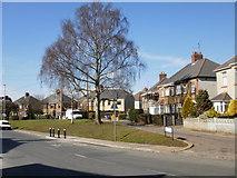 ST3288 : Buckingham Crescent, Newport by Jaggery