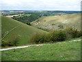 SU7120 : Ramsdean Down and Rake Bottom from Butser Hill by Chris Gunns