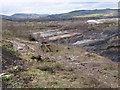 SX8575 : Southacre Quarry from the south (1/2) by Robin Stott