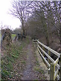 TM3569 : Footpath to Bruisyard Road by Geographer