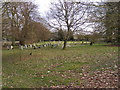 TM3569 : Peasenhall Cemetery by Adrian Cable