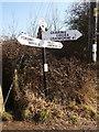 SU1213 : Alderholt: Bonfire Hill finger-post by Chris Downer