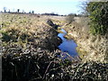 O0449 : Stream, Peacockstown, Co Meath by C O'Flanagan