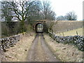 NY7005 : Track under disused railway by David Brown