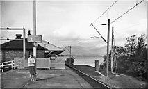 NS3882 : Balloch Pier Station by Ben Brooksbank