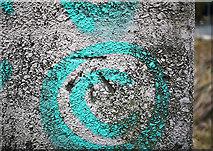 J3371 : Bench Mark, Belfast by Rossographer