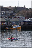 NM8529 : Sea Kayakers in Oban Bay by Michael Jagger