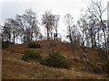 NH4018 : Shooting platform near Levishie Burn by Sarah McGuire