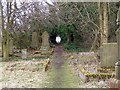 NZ3272 : Cemetery Path, St Albans Church, Earsdon by Christine Westerback