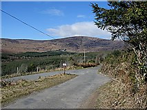 S8650 : Mt Leinster by kevin higgins