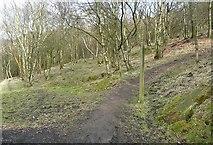 SD9726 : The Pennine Way takes a short-cut, Erringden by Humphrey Bolton