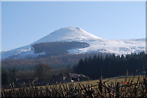 NO2307 : East Lomond snow covered from the fields of Falkland House by Thomas Dick
