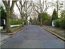 J3370 : Broomhill Park, Belfast by Dean Molyneaux