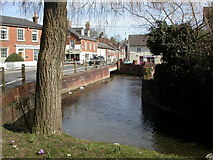 SU1660 : Pewsey, River Avon by Mike Faherty