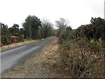 C2023 : Road at Magheradrummond by Kenneth  Allen