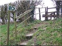 ST9117 : Steps and stile, Ashmore by Maigheach-gheal