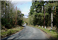 SO8281 : Kingsford Lane at Kingsford, Worcestershire by Roger  Kidd