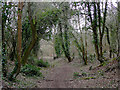 SO8280 : Byway to Drakelow, Worcestershire by Roger  Kidd
