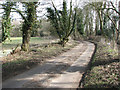 TL9891 : Bradcar Road turning north-easterly to meet Hargham Road by Evelyn Simak