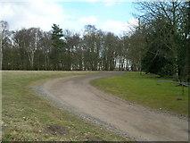 SK6053 : Farm track off Blidworth Lane by JThomas