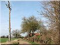 TL9990 : Electricity pole beside Wash Lane by Evelyn Simak