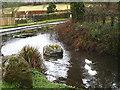 SX3574 : Duck pond in Venterdon by Rod Allday