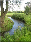 O1464 : Delvin River at Gibblockstown, Co. Meath by Kieran Campbell