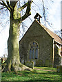 TM1581 : Tall tree growing by the west end of St Andrew's church by Evelyn Simak