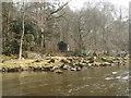 NY5342 : Fishermen's hut on the River Eden by Andy Waddington