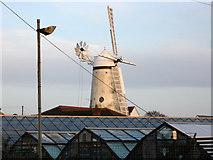 TQ6104 : Stone Cross Windmill by Simon Carey
