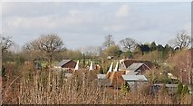 TQ7136 : Risebridge Oast house by N Chadwick