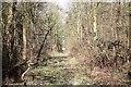 SO8942 : Bridleway through The Ridings by Bob Embleton