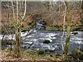NS7883 : The Garvald Burn flowing into the River Carron by Lairich Rig