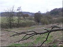 ST6570 : River Avon by Rick Crowley