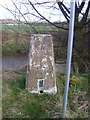 SE4203 : Marles bridge trig point. by steven ruffles