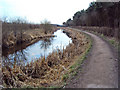 SK4742 : The Nottingham Canal west of Cossall by Trevor Rickard