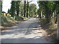 SJ6070 : Driveway to Petty Pool centre by Dr Duncan Pepper