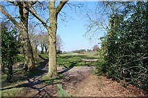 SU5701 : Golf course of Lee-on-the-Solent Golf Club (2) by Barry Shimmon