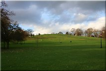 TQ2783 : Primrose Hill by Andrew Wood