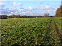 SU7167 : Pasture, Three Mile Cross by Andrew Smith