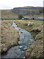 SD9471 : Lambs cavort by the beck by Karl and Ali