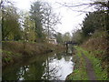 SK6279 : Chesterfield canal . by steven ruffles