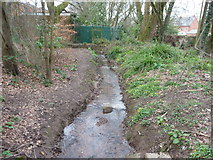 SS9712 : Tiverton : Small Stream by Lewis Clarke