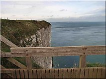 TA1974 : Looking for Puffins from Bempton RSPB viewpoint by Steve  Fareham
